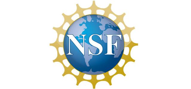 Dr. Pala receives NSF CAREER Award