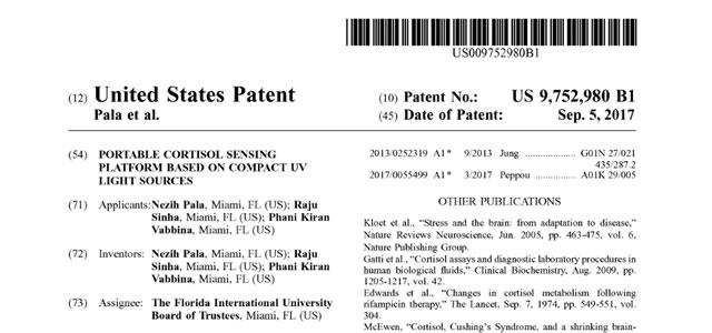 Our Patent is Granted